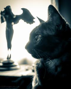 gothic kitty phoebe